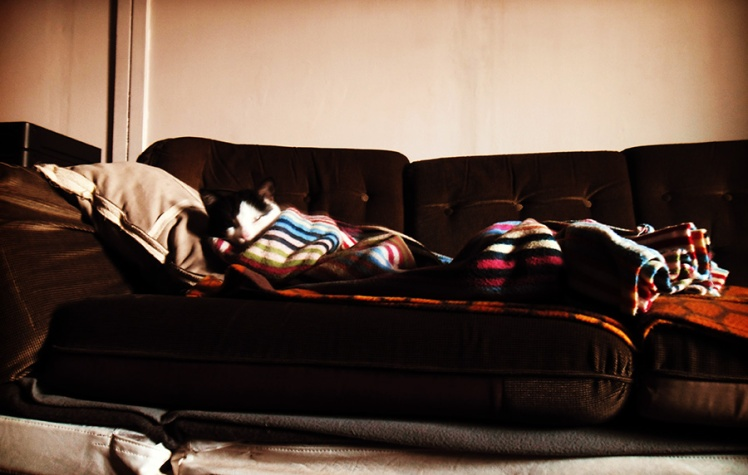 sleeping_sofa_beauty