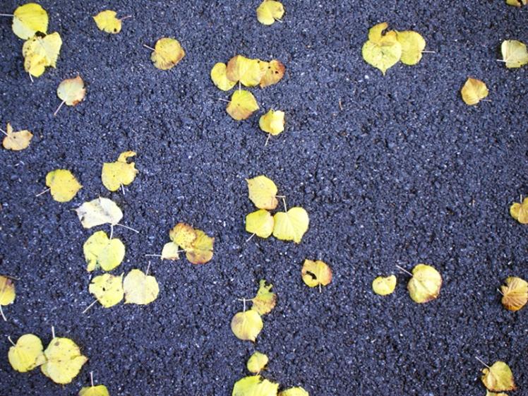 yellow_floor_3_small